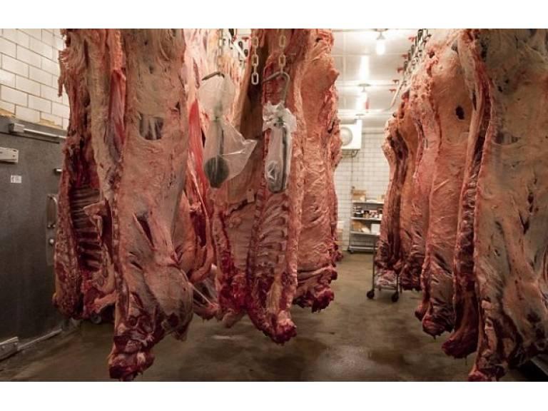 Uruguay está más cerca de exportar carne a Japón.