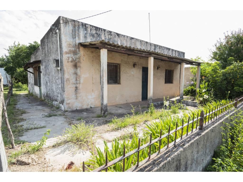 Alquiler  Colonia Carmelo